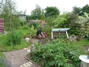 Girrick vegetable patch
