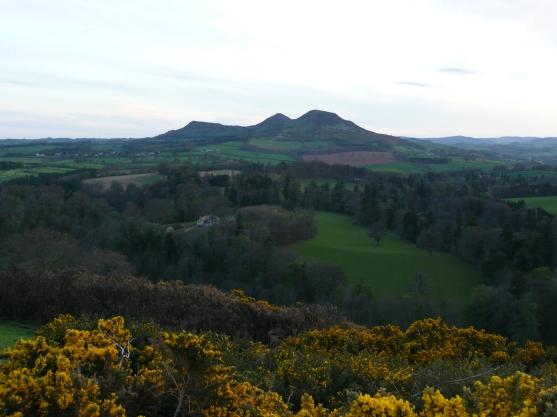 Scots View