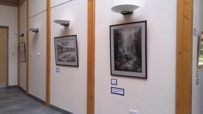 Exhibition - naturalistic landscapes